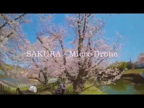 桜×マイクロドローン