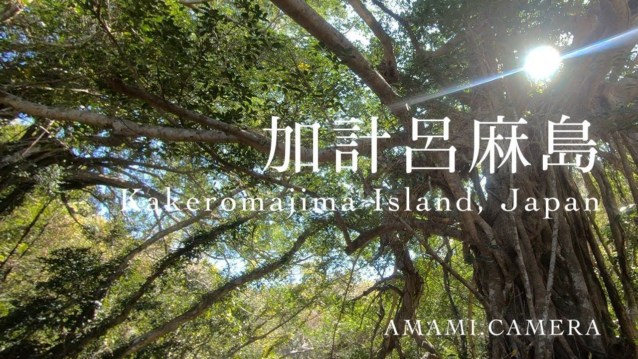 加計呂麻島 / Kakeromajima