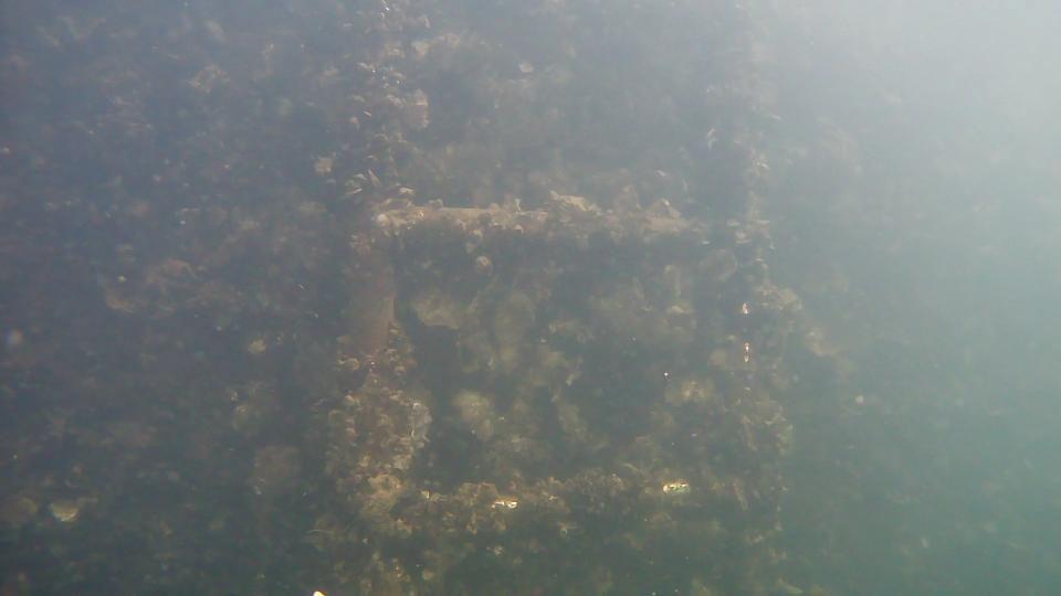 水中内設備メンテナンス